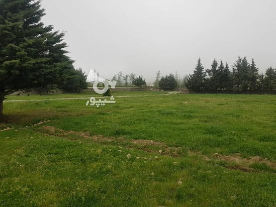 زمین ویلایی شهررویایی کلاردشت در گروه خرید و فروش املاک در مازندران در شیپور-عکس5