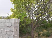 باغچه با دیوار و درختان سبز در شیپور-عکس کوچک