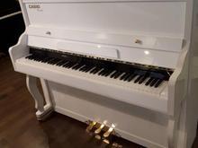 پیانو کاسیو yamaha 192 پلیفونی در شیپور
