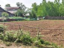 فروش زمین مسکونی 1500 متر در صومعه سرا در شیپور