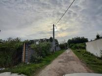 فروش زمین مسکونی 200 متر در سلمان شهر(اسبچین شالی زار) در شیپور