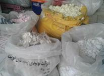 پودر بلکا در چند رنگ زیر قیمت در شیپور-عکس کوچک