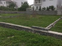 284متر زمین مسکونی محدوده ی نوشهر در شیپور-عکس کوچک