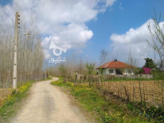 فروش زمین 1050 متری (مسکونی - باغی) صومعه سرا - میانده در گروه خرید و فروش املاک در گیلان در شیپور-عکس1
