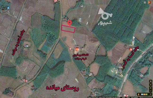 فروش زمین 1050 متری (مسکونی - باغی) صومعه سرا - میانده در گروه خرید و فروش املاک در گیلان در شیپور-عکس7
