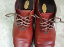 کفش چرم مردانه در شیپور-عکس کوچک