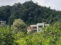 فروش زمین مسکونی 600 متر در تنکابن سلیمان آباد  در شیپور-عکس کوچک