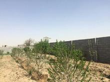 880متر باغ محصور_منطقه کلیه باغها دارای ساخت _ در شیپور