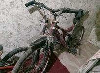 دوچرخه 26.. در شیپور-عکس کوچک