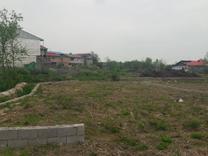 فروش زمین مسکونی 257 متر در رضوانشهر در شیپور