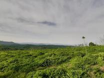 700 متر در روستای توریستی در شیپور