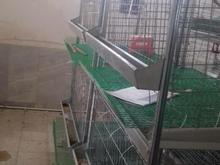 قفس سه طبقه مرغ تزیینی درجه یک بسیارکم کار در شیپور