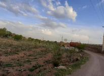 باغ گردو بهر جاده در شیپور-عکس کوچک