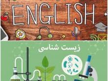 مدرس زیست شناسی و زبان در شیپور