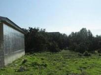 فروش زمین مسکونی 385 متر در بابلسر در شیپور-عکس کوچک