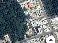 165 متر زمین مسکونی، کلیه امتیازات، روستای یوسفکند، متری1600 در شیپور-عکس کوچک