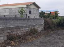 فروش زمین مسکونی5000متری خارج بافت کوچه8متری در هلومسر در شیپور-عکس کوچک