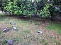 140 متر باغ مشهدی کلا در شیپور