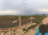 فروش زمین کشاورزی 449 متر در بهشهر در شیپور-عکس کوچک
