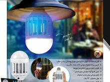 لامپ حشره کش برقی در شیپور