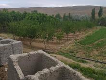 فروش باغ1800متری در استان چهارمحال در شیپور