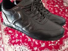 کفش چرم مردانه در شیپور