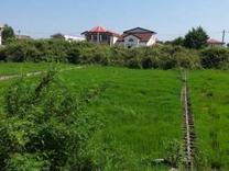 فروش زمین مسکونی 2000 متر در محمودآباد در شیپور