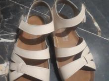 کفش های کم کارکرده طبی همه در شیپور