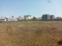 فروش زمین 1000 متری در آمل در شیپور-عکس کوچک