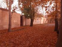 فروش قطعات باغ خام با سند تک برگ محدوده ((گلبرگ)) در شیپور