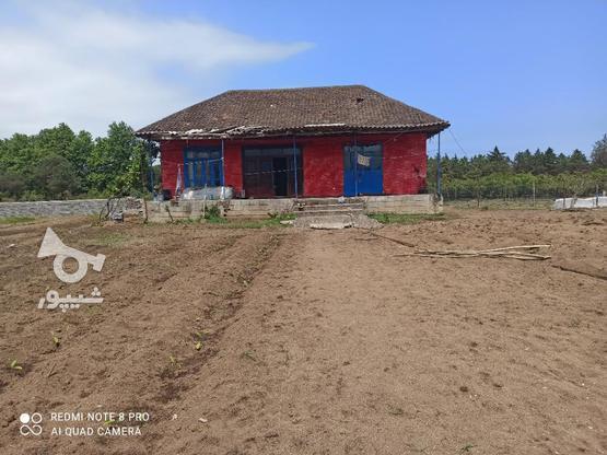 فروش خانه و کلنگی 1800 متر در تالش روستای پشته در گروه خرید و فروش املاک در گیلان در شیپور-عکس6