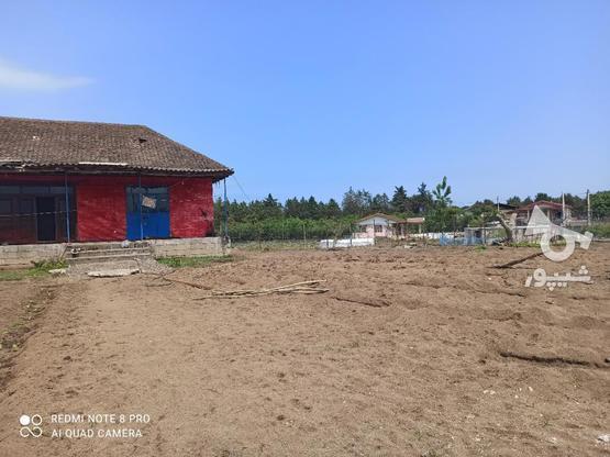 فروش خانه و کلنگی 1800 متر در تالش روستای پشته در گروه خرید و فروش املاک در گیلان در شیپور-عکس4