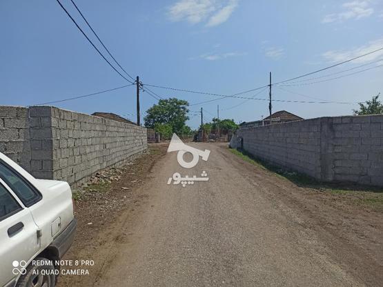فروش خانه و کلنگی 1800 متر در تالش روستای پشته در گروه خرید و فروش املاک در گیلان در شیپور-عکس1