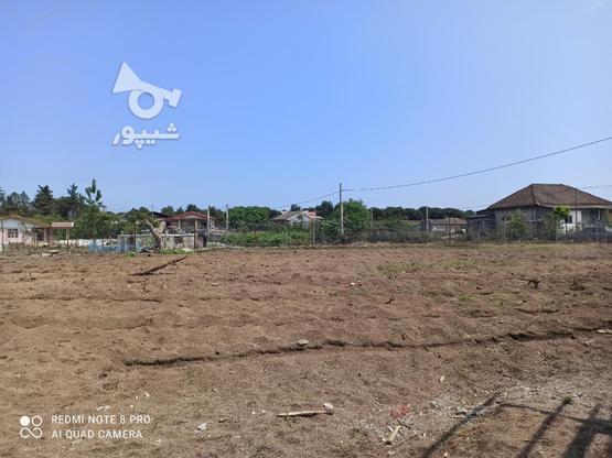 فروش خانه و کلنگی 1800 متر در تالش روستای پشته در گروه خرید و فروش املاک در گیلان در شیپور-عکس3