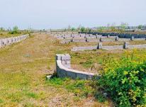فروش فوری زمین 166 متر در چاف درمنطقه ویلانشین در شیپور-عکس کوچک
