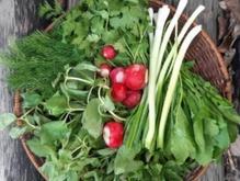 سبزی و لوبیا در شیپور