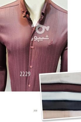 تولیدی پیراهن اسپورت تهران مارک در گروه خرید و فروش خدمات و کسب و کار در تهران در شیپور-عکس2