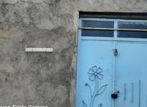 فروش 3جریب باغ جنگلی در شکرک در شیپور-عکس کوچک