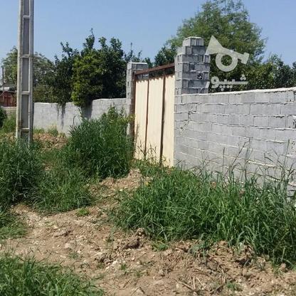 زمین مسکونی 460 متر در اسفندان در گروه خرید و فروش املاک در مازندران در شیپور-عکس2