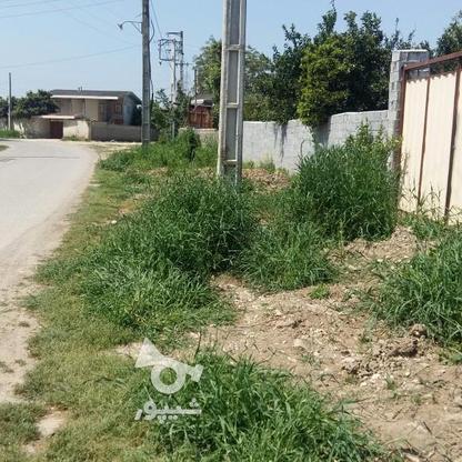 زمین مسکونی 460 متر در اسفندان در گروه خرید و فروش املاک در مازندران در شیپور-عکس1