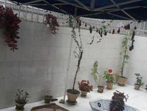 اجاره آپارتمان 125 متر در میدان امام در شیپور