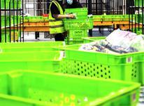 استخدام کارگر در دیجی کالا در شیپور-عکس کوچک