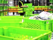 استخدام کارگر در دیجی کالا در شیپور