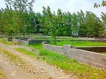 فروش زمین مسکونی 170 متر در محمودآباد در شیپور