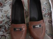 کفش مارک گوچی سایز 40 کاملا تمیز در شیپور-عکس کوچک