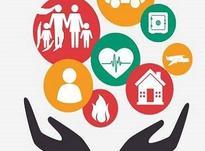 استخدام کارشناس و مشاور امور بیمه ای در شیپور-عکس کوچک