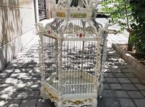 قفس سلطنتی تک رنک در شیپور-عکس کوچک