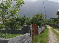 زمین مسکونی 330 متر در ملکار در شیپور-عکس کوچک