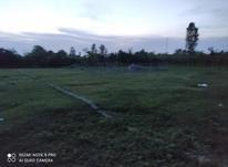 فروش زمین 200 متر در تنکابن در شیپور-عکس کوچک