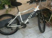فروش فوری دوچرخه ویوا در شیپور-عکس کوچک